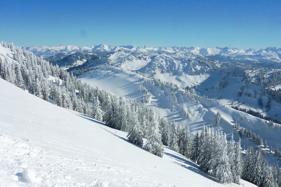 Schneehang_Winterwald