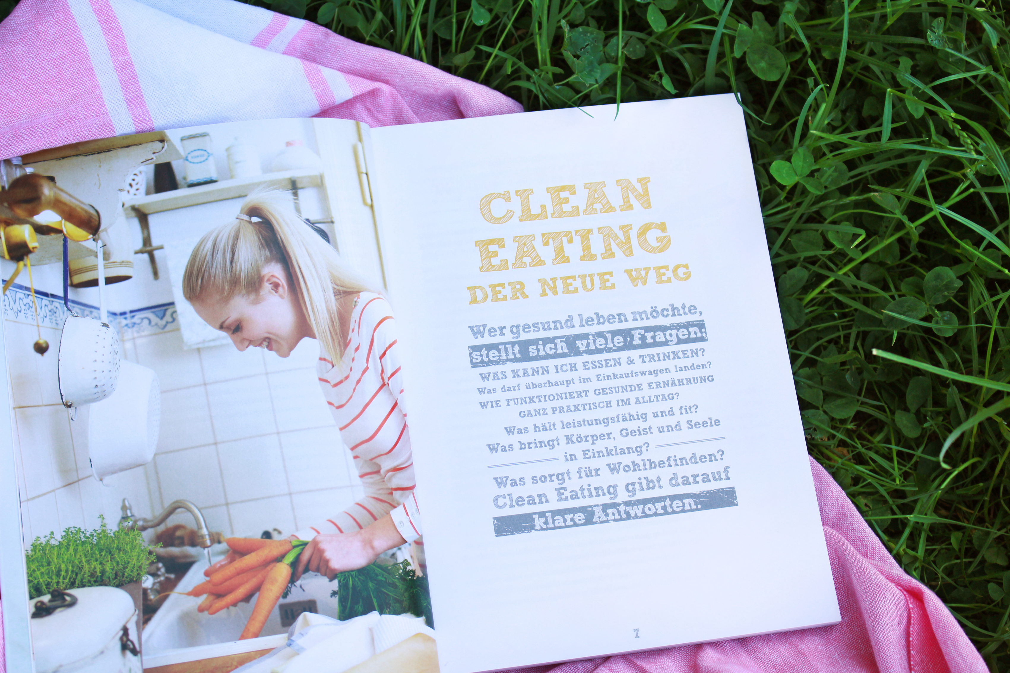 clean-eating-ratgeber-literatur