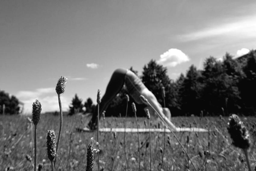 yoga-asana-herabschauender-hund