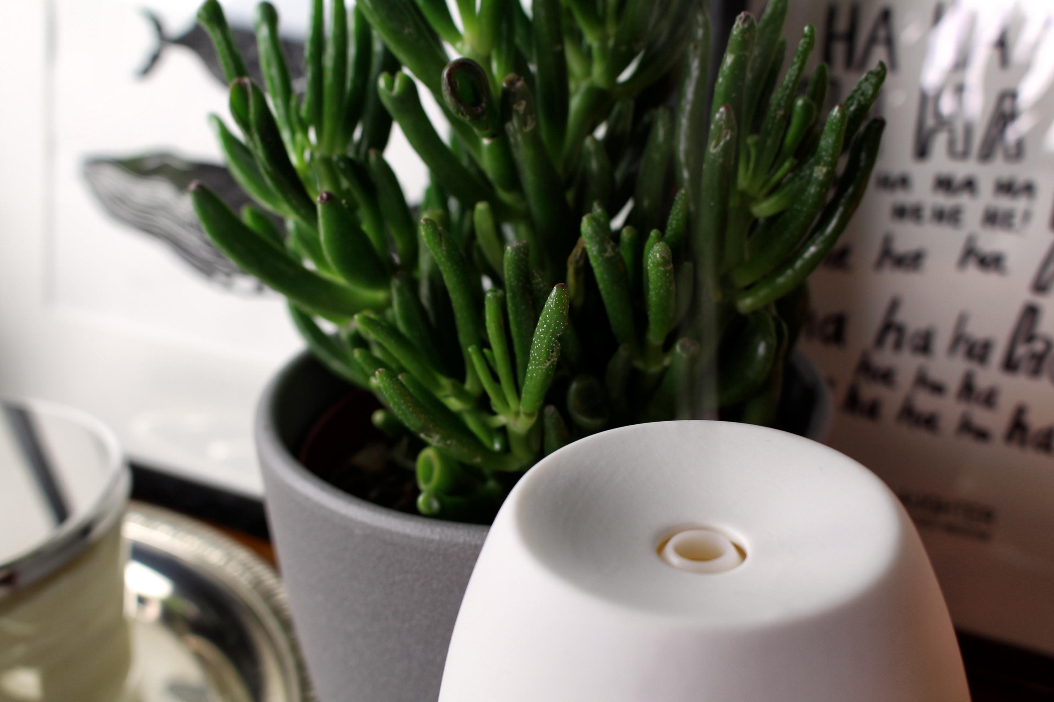 aroma-vernebler-ätherische-öle-diffuser-primavera