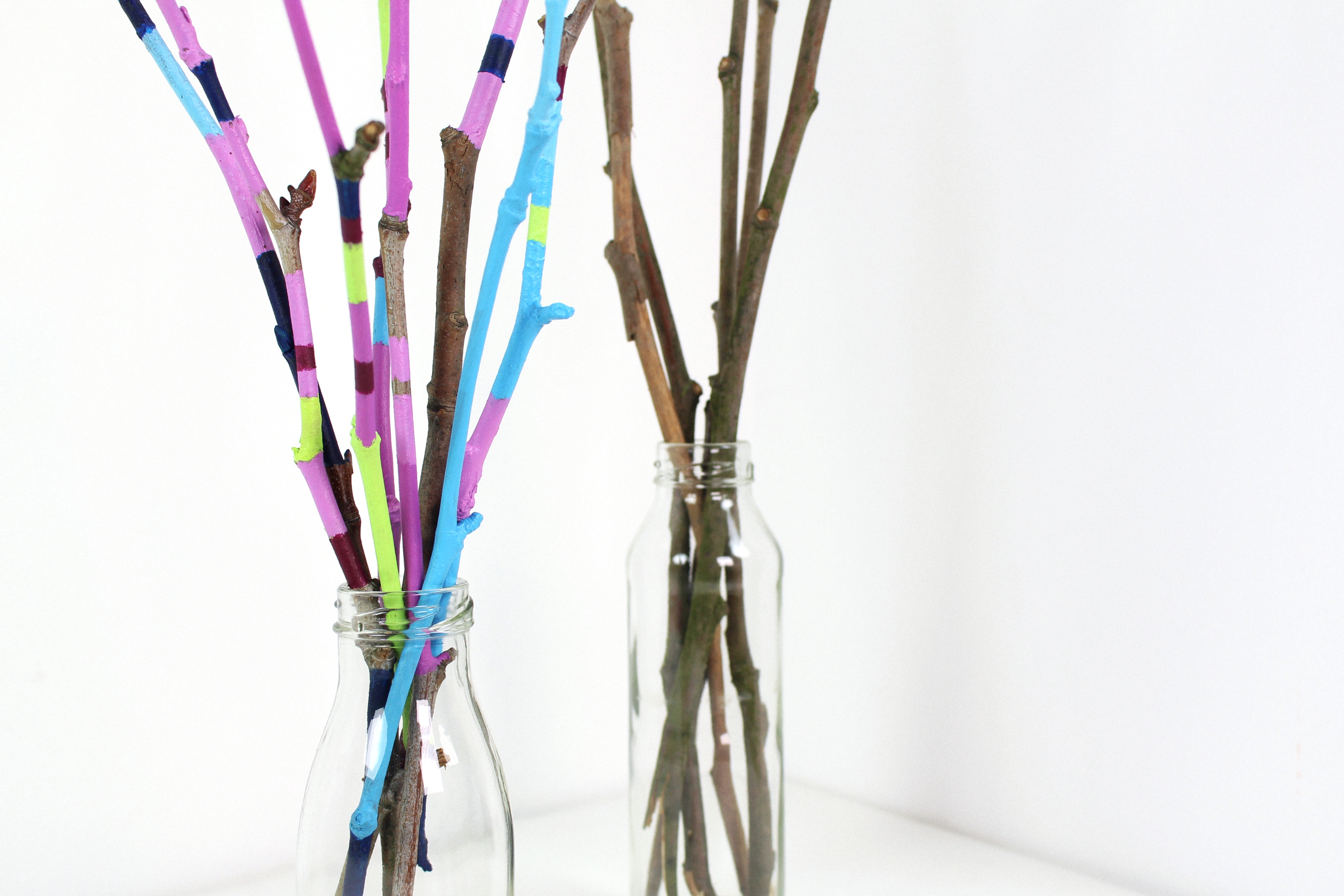 painted-twigs-diy-03