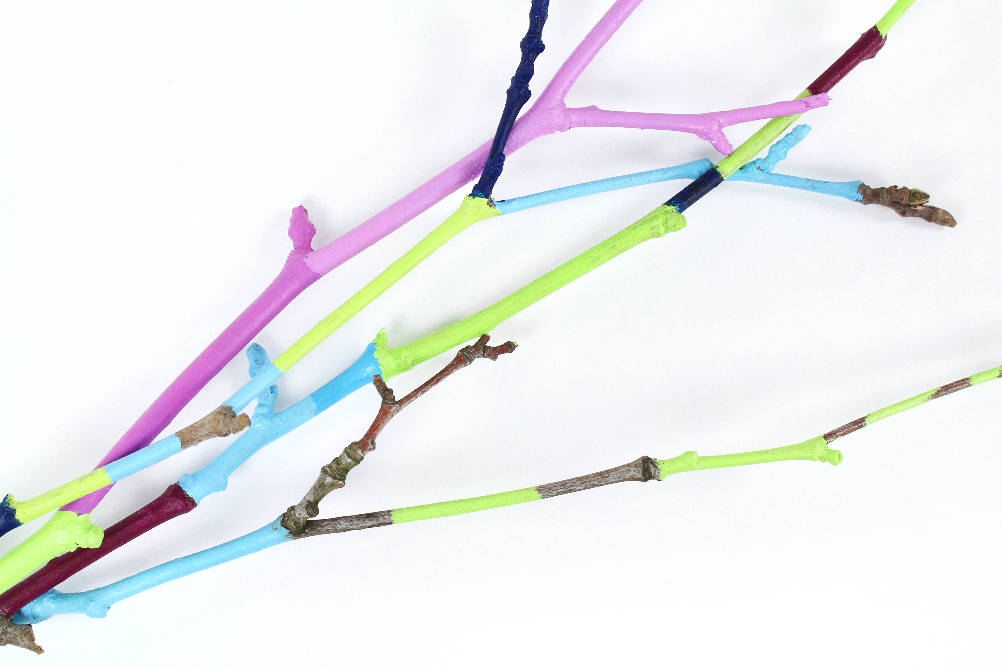 painted-twigs-diy-06
