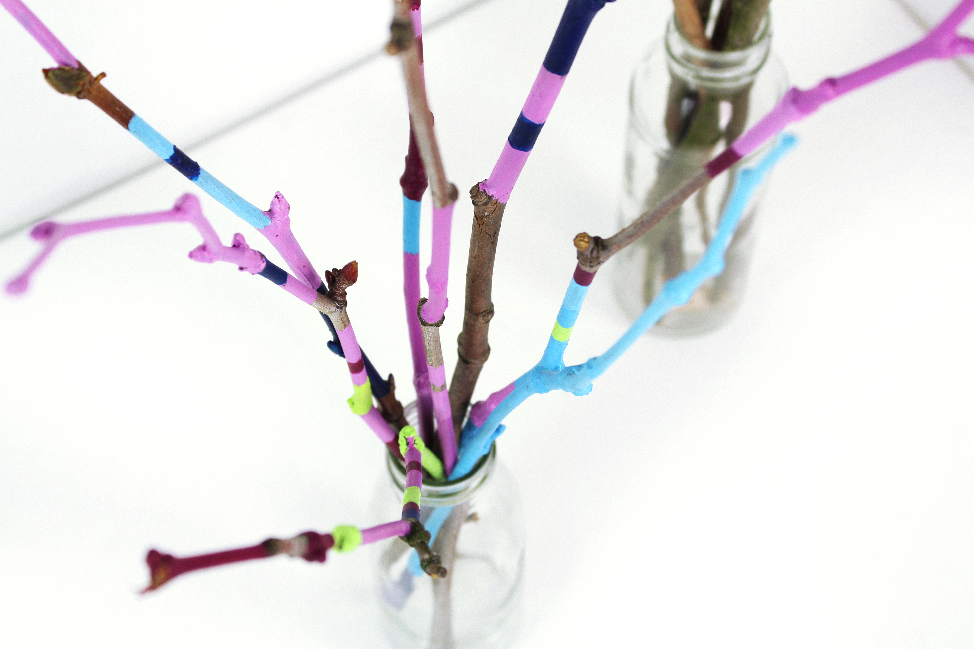 painted-twigs-diy-08