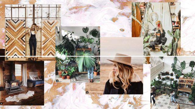 instagram_picks_interior_plants_style